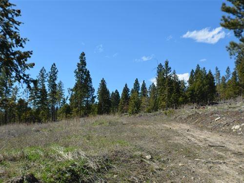 156.37 Acres in Kalispell, MT : Kalispell : Flathead County : Montana