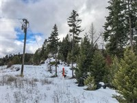 170.26 Acres in Libby, MT : Libby : Lincoln County : Montana