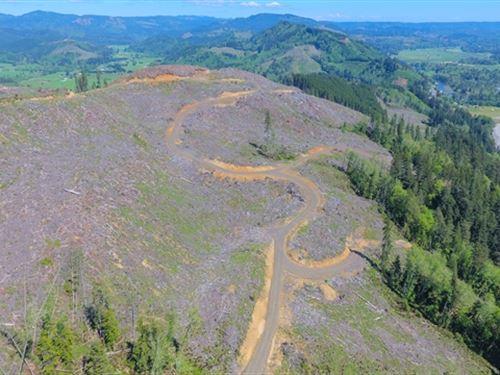 503.64 Acres in Cathlamet, WA : Cathlamet : Wahkiakum County : Washington