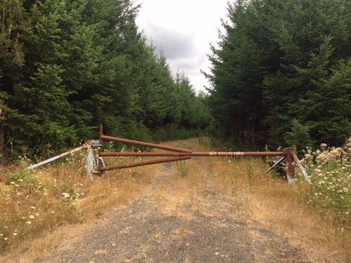 235.29 Acres in Banks, OR : Banks : Washington County : Oregon