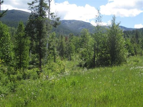 160.83 Acres in Bigfork, MT : Bigfork : Lake County : Montana