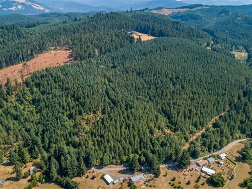 64.64 Acres in Cottage Grove, OR : Cottage Grove : Lane County : Oregon
