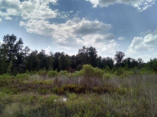22.69 Acres in Winnfield, LA : Winnfield : Winn Parish : Louisiana
