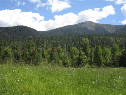 161.83 Acres in Bigfork, MT : Bigfork : Lake County : Montana