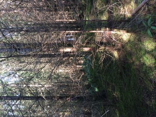 146.50 Acres in Scio, OR : Scio : Linn County : Oregon