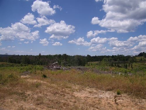 384.85 Acres in Bude, MS : Bude : Franklin County : Mississippi