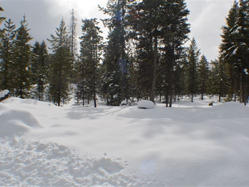 232.28 Acres in Thompson Falls, MT : Thompson Falls : Lincoln County : Montana