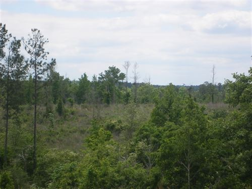 211.80 Acres in Ellisville, MS : Ellisville : Jones County : Mississippi