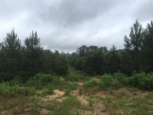 303.39 Acres in Choudrant, LA : Choudrant : Lincoln Parish : Louisiana