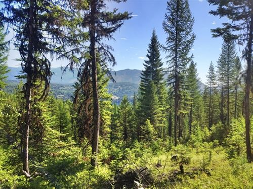 159.90 Acres in Thompson Falls, MT : Thompson Falls : Sanders County : Montana