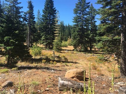 484.48 Acres in Ashland, OR : Ashland : Jackson County : Oregon