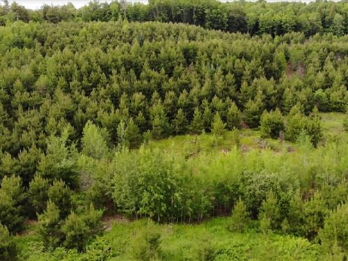 80 Acres in L'Anse, MI : L'anse : Baraga County : Michigan