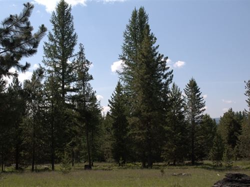 188 Acres in Kalispell, MT : Kalispell : Flathead County : Montana