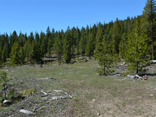 161.32 Acres in Kalispell, MT : Kalispell : Flathead County : Montana