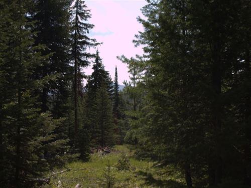 520.15 Acres in Kalispell, MT : Kalispell : Flathead County : Montana