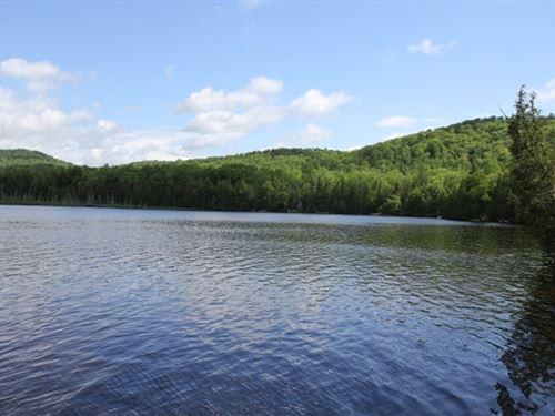 64.11 Acres in Bingham, ME : Bingham : Somerset County : Maine