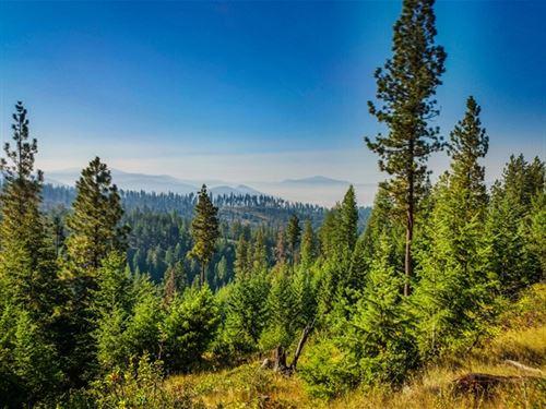 164.29 Acres in Hot Springs, MT : Hot Springs : Sanders County : Montana