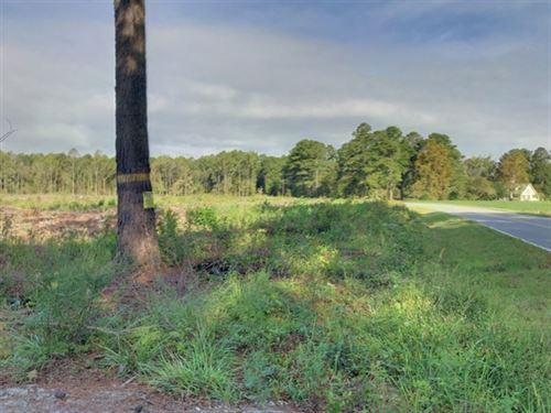 41.60 Acres in Columbia, NC : Columbia : Washington County : North Carolina