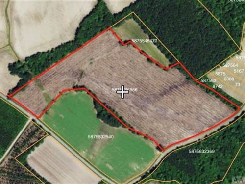 23.85 Acres in Lewiston Woodville, NC : Lewiston Woodville : Bertie County : North Carolina