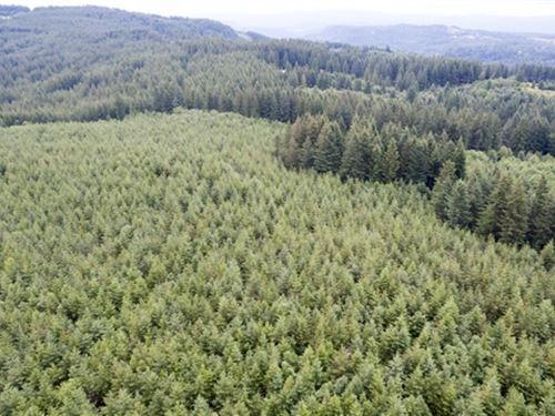 483.46 Acres in Washougal, WA : Washougal : Clark County : Washington