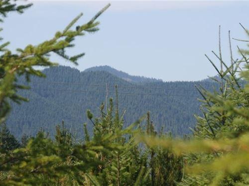 15.02 Acres in Skokomish, WA : Skokomish : Mason County : Washington