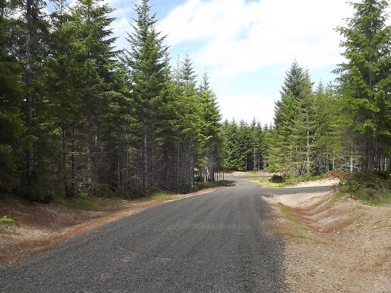 20.84 Acres in Skokomish, WA : Skokomish : Mason County : Washington