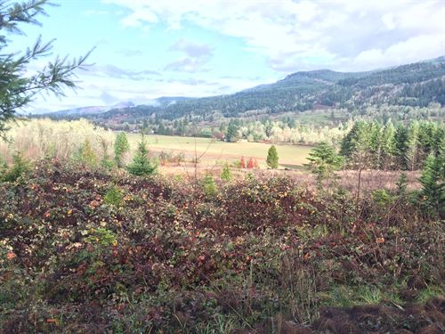 5.43 Acres in Yoncalla, OR : Yoncalla : Lane County : Oregon