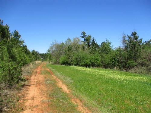644.99 Acres in Marion, AL : Marion : Perry County : Alabama