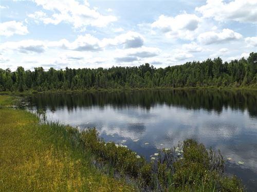 25 Acres in Republic, MI : Republic : Baraga County : Michigan