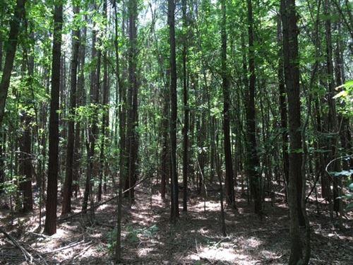 12.59 Acres in Haynesville, LA : Haynesville : Claiborne Parish : Louisiana