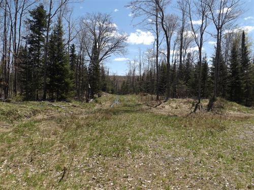 65 Acres in L'Anse, MI : L'anse : Baraga County : Michigan