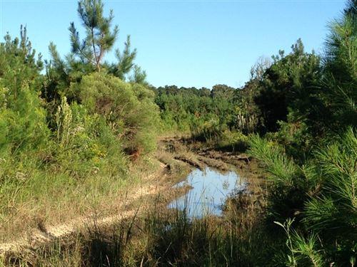 131.95 Acres in Greensburg, LA : Greensburg : Saint Helena Parish : Louisiana