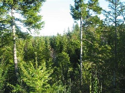 10.25 Acres in Skokomish, WA : Skokomish : Mason County : Washington