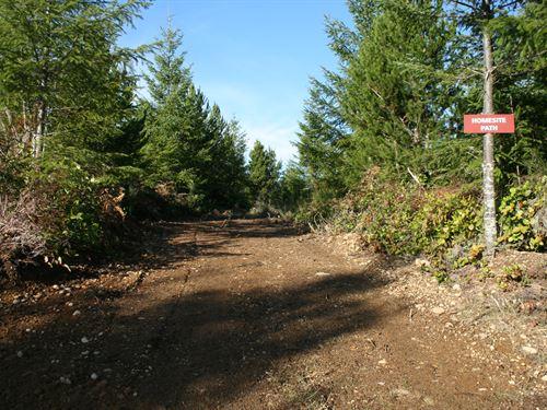 10.30 Acres in Skokomish, WA : Skokomish : Mason County : Washington