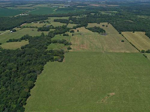 Pristine 170+/, Acre Cattle Farm : Green Ridge : Pettis County : Missouri