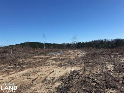 Etteca Road Homesite, Hunting : Fayette : Alabama