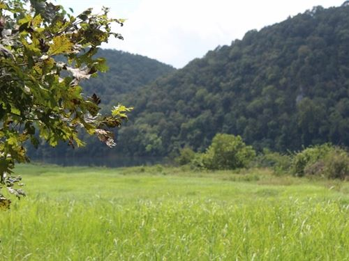 Acreage For Sale On The White River : Guion : Izard County : Arkansas