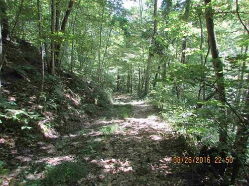 9.2 Acres Unrestricted Land : Greeneville : Hawkins County : Tennessee