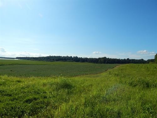 130 Acre Farm / Lease Purchase : Central City : Muhlenberg County : Kentucky