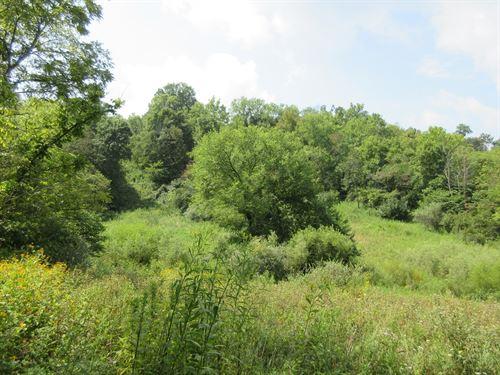 Morgan County, Ohio Hunting Land : Chesterhill : Morgan County : Ohio