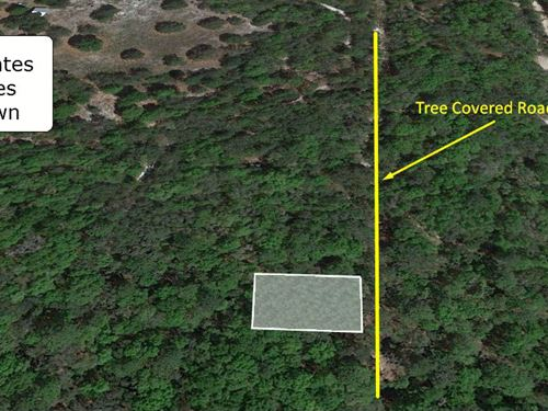 Great .22 Acre Lot Beautiful View : Inverness : Citrus County : Florida