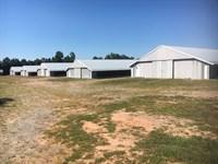 Clem Farm, 5 Pullet Poultry Houses : Carrollton : Carroll County : Georgia