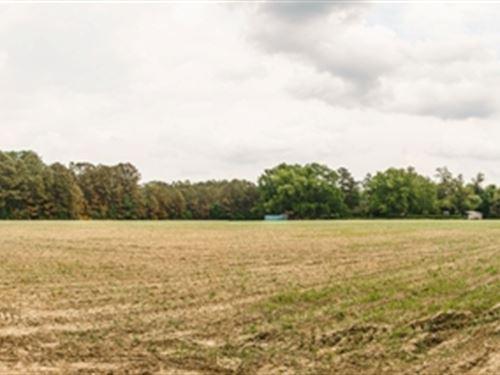 Guyton Gem : Guyton : Effingham County : Georgia