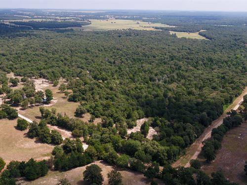 Ultimate Recreational Property : Milano : Milam County : Texas
