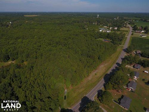 Saratoga Homesite/Timber Tract : Wilson : North Carolina