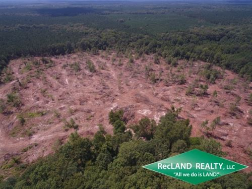 36 Ac, Clear Cut Timberland : Grayson : Caldwell Parish : Louisiana