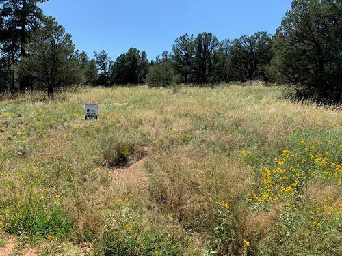 5+ Acres Cotopaxi, CO Fremont : Cotopaxi : Fremont County : Colorado