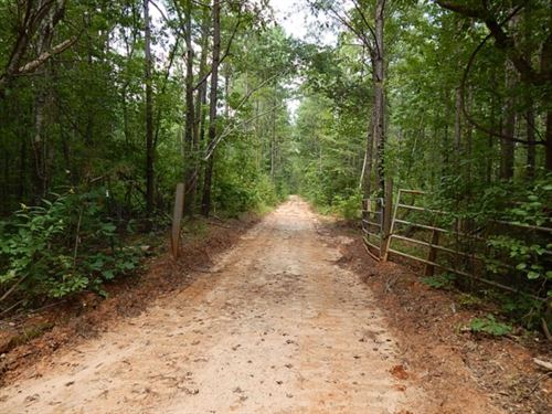 120 Acres In Newton County In Union : Union : Newton County : Mississippi