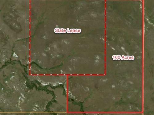 Vacant Land Wibaux County, Montana : Wibaux : Montana