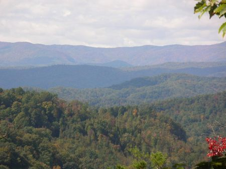 Fork Mountain - 668 Acres : Blowing Rock : Caldwell County : North Carolina